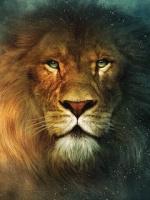 Gery-Lion