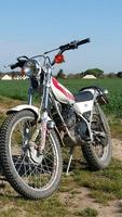 francky62