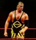 Owen Hart/dimi
