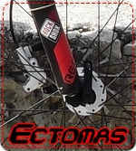 ectomas
