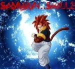 SaMuRAi..SkiLLz