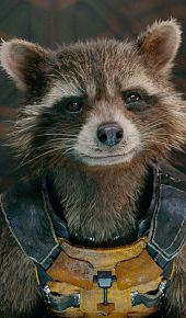 Rocket Raccoon {02}