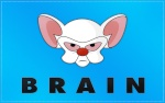 Brainfarter