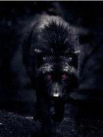 alonewolf