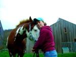 horses-ali