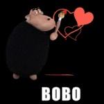BoBo'SCC'