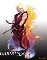 gabiru330