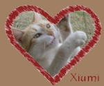 Xiumi