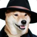 Detective Doge