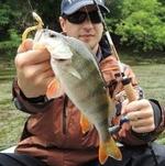FishBlog