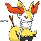 Aaron The Braixen