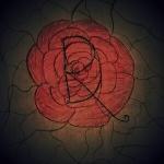 Darkendrose