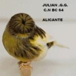julianespaña