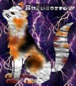 Burnsorrow