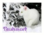 Twistedheart