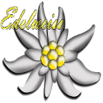 Edelweiis