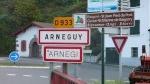 Arnegi
