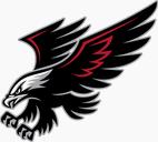 Hawk19