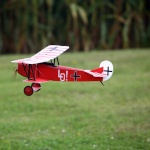 parkflyer29