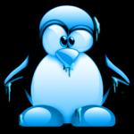xela le pingouin