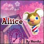 [Aliice]