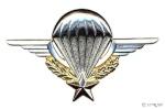 angel12011