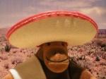 MexicanMonkey