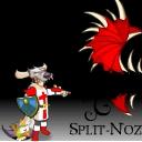 Spilt-Noz
