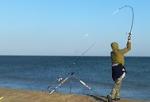 Fish on 31