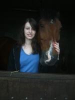 chevaux!!