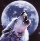 silwolf