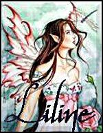liline la petite elfe
