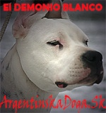 ElDemonioBlanco