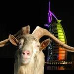 Un sacré bouc à Dubai