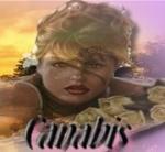 canabis3377