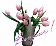 tulipe42