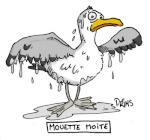 Evilmouette