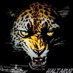 Haltarus