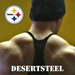 DesertSteel