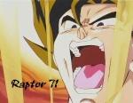 raptor71
