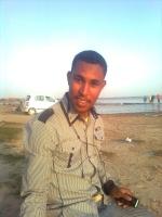 هشام شمس الدين