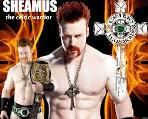 Mini-Sheamus