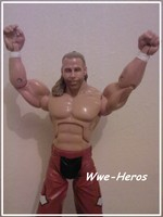 Wwe-Heros