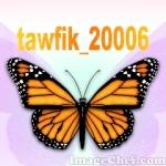 tawfik_20006