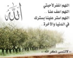 azefoun