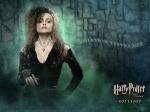 lady_bellatrix
