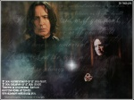 snape4-ever