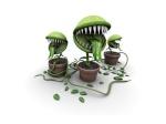 Autres plantes carnivores 1007-97