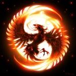 -Phoenix-