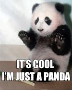 Ⅾeath Panda x
